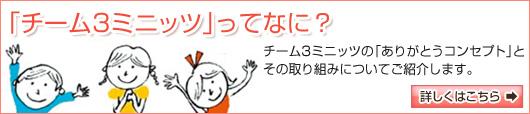 bn-t3m.jpg